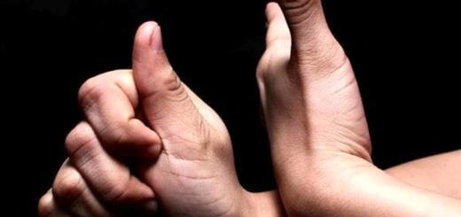 lis lingua italiana dei segni